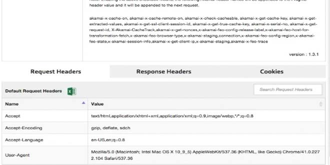 Полезные расширения для Google Chrome CDN Headers Cookies
