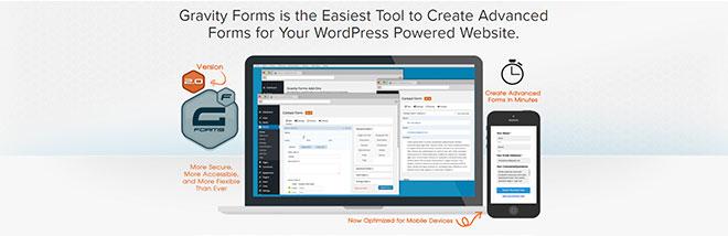 плагин контактной формы для WordPress Gravity Forms